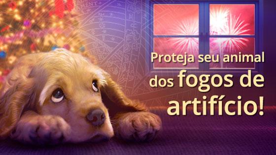 Proteja seu animal dos fogos de artifício!