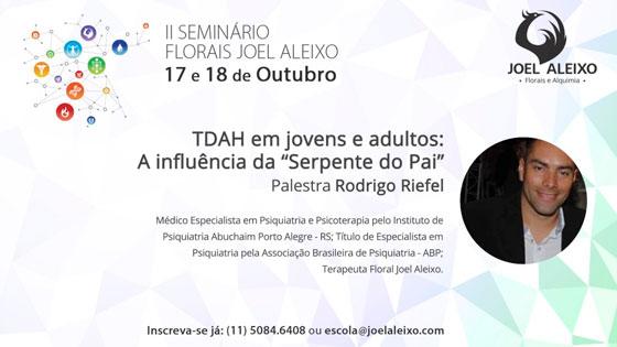 seminario-rodrigo-riefel-alkhemylab-blog.jpg